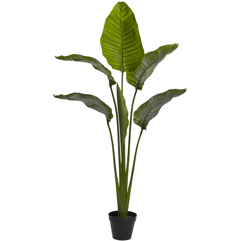 "64"" Travellers Palm Tree UV Resistant (Indoor/Outdoor)"