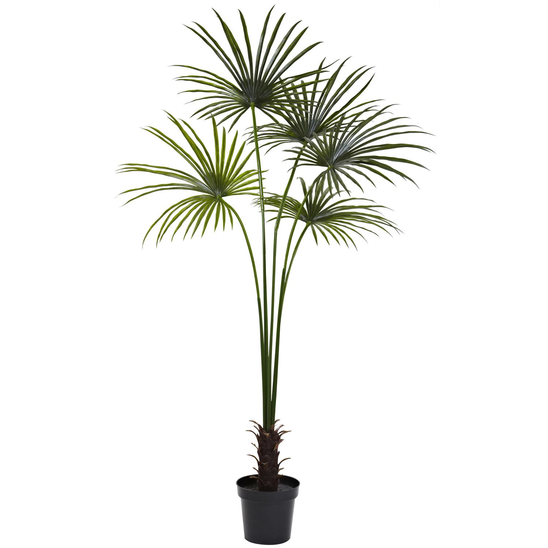 7' Fan Palm Tree UV Resistant (Indoor/Outdoor)